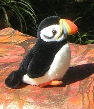 112409Stuffed Puffin