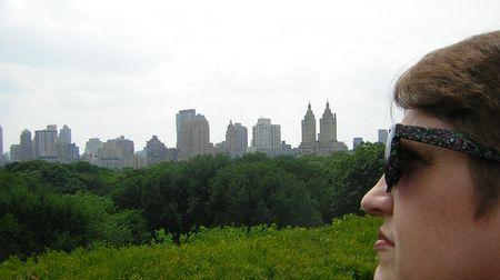 Met park ny skyline