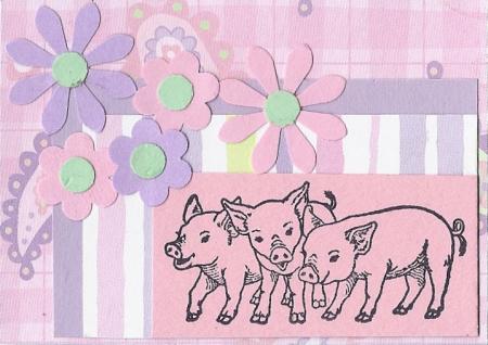 Pig ATC2