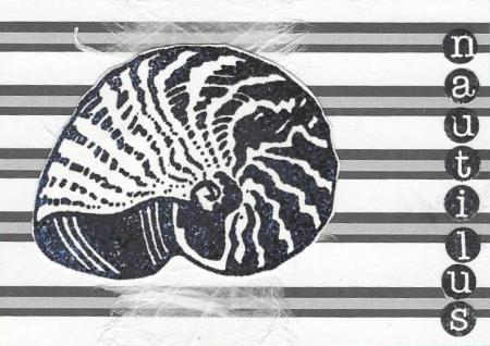 Nautilus atc