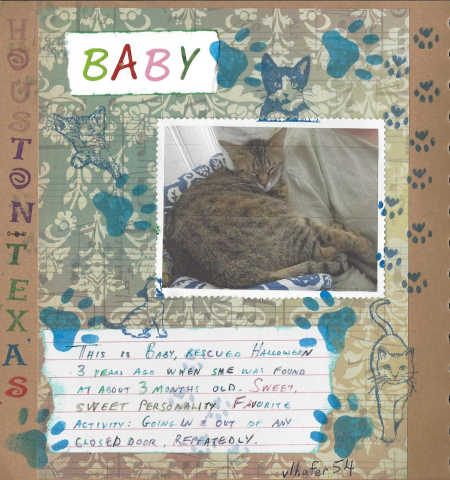 Cat book baby Swap
